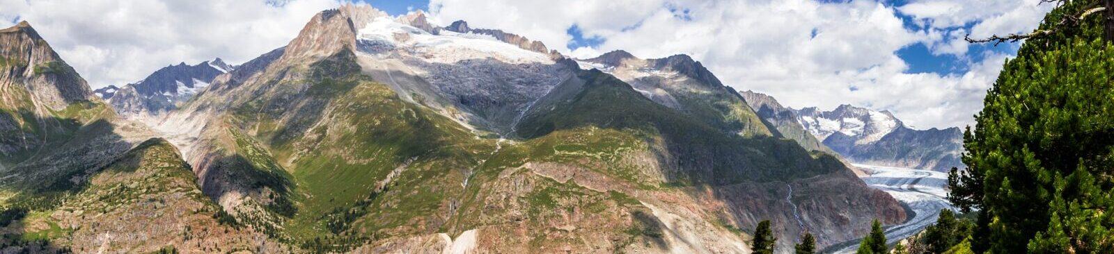 Höchstleistungen aus der Schweiz